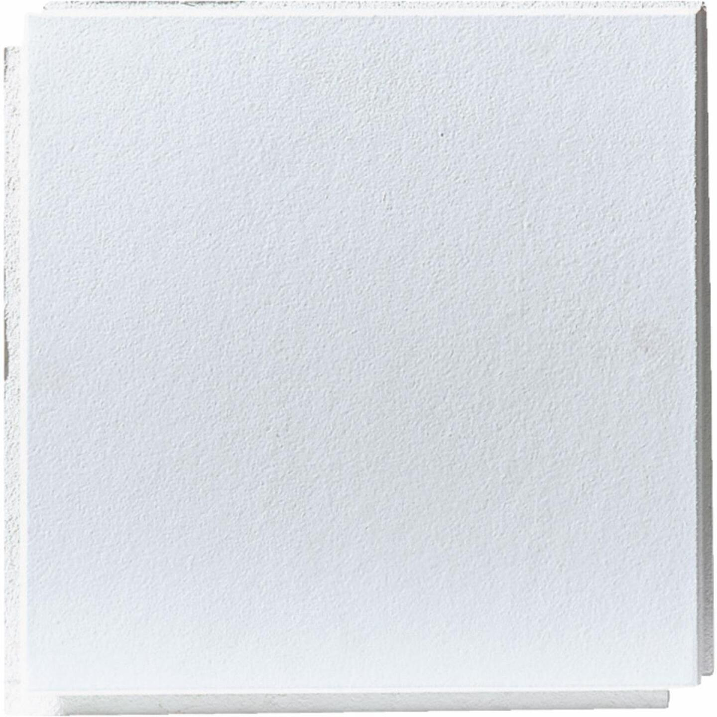 BP Silencio Chablis 12 In. x 12 In. White Wood Fiber Nonsuspended Ceiling Tile (32-Count) Image 1