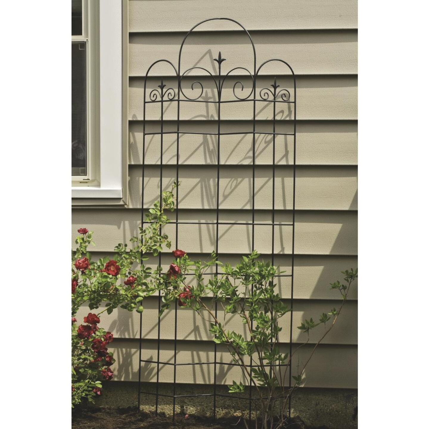 Panacea Metal Offset Cathedral Black Trellis Image 3