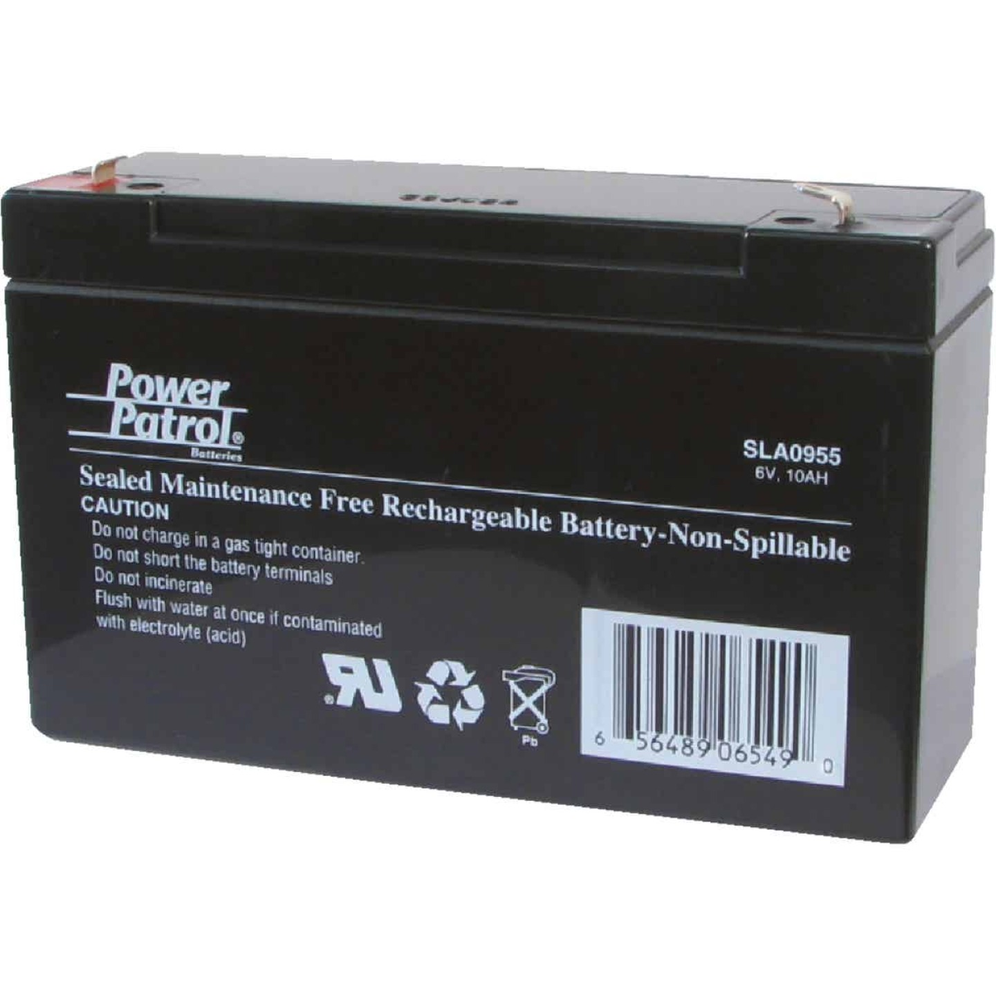 Interstate All Battery Power Patrol 6V 10A Security System Battery Image 1