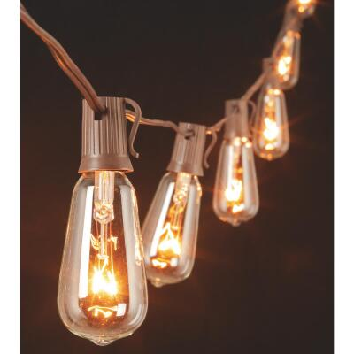 Gerson 10 Ft. 10-Light Clear Oblong Bulb String Lights